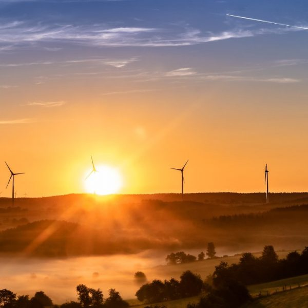 Digital Marketing in the Cleantech Industry